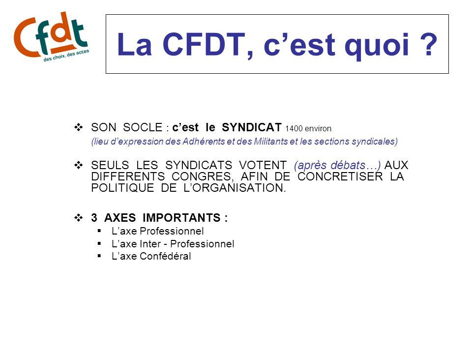 La Section Syndicale et le syndicalisme dadhérent « Comment faites-vous pour faire adhérer à la CFDT des salariés de votre entreprise .