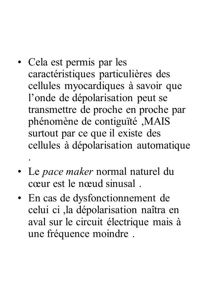 Cela est permis par les caractéristiques particulières des cellules myocardiques à savoir que londe de dépolarisation peut se transmettre de proche en