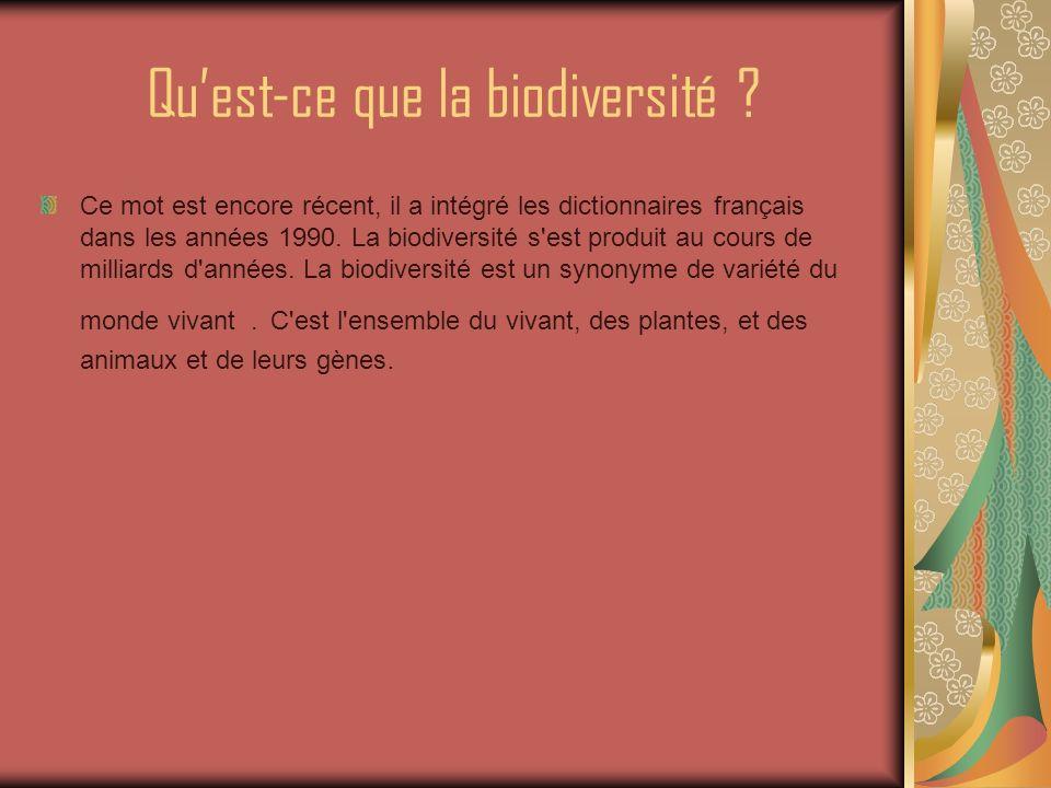 La biodiversité à quoi ça sert .