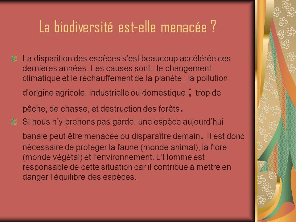 Comment protéger la biodiversité .