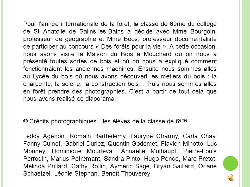 Pour lannée internationale de la forêt, la classe de 6ème du collège de St Anatoile de Salins-les-Bains a décidé avec Mme Bourgoin, professeur de géog