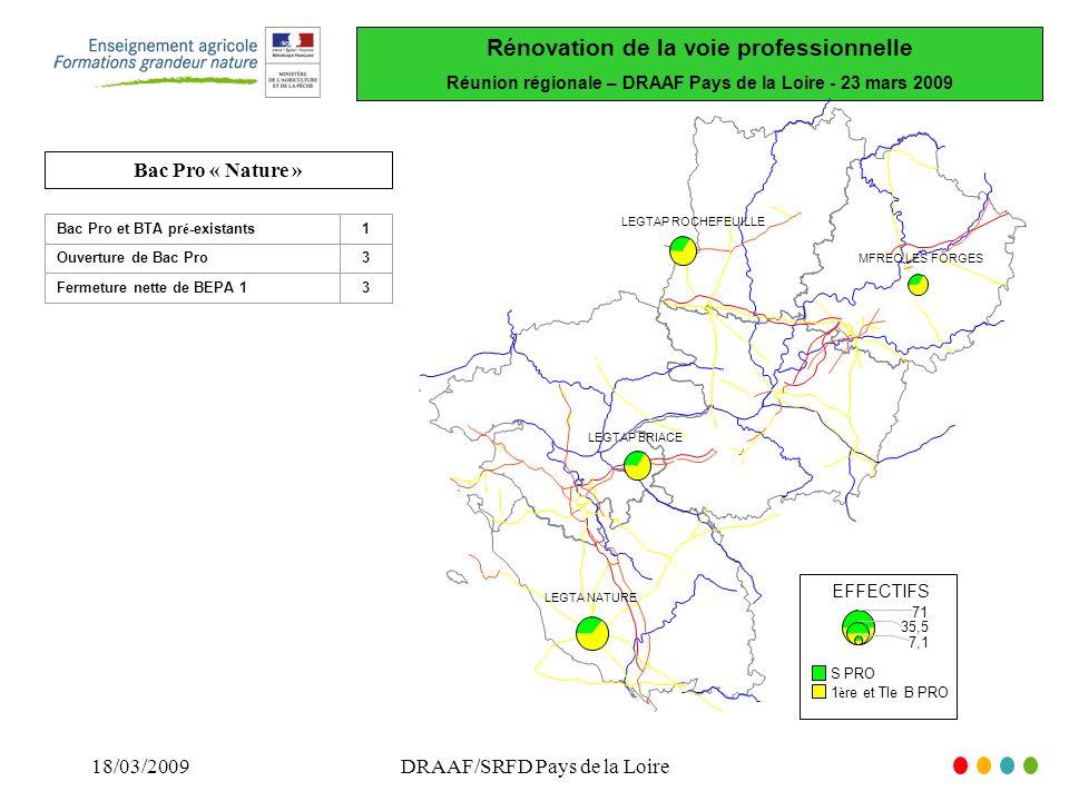 Rénovation de la voie professionnelle Réunion régionale – DRAAF Pays de la Loire - 23 mars 2009 18/03/2009DRAAF/SRFD Pays de la Loire LEGTAP BRIACE LEGTA NATURE MFREO LES FORGES LEGTAP ROCHEFEUILLE EFFECTIFS 71 35,5 7,1 S PRO 1 è re et Tle B PRO Bac Pro « Nature » 1Bac Pro et BTA pr é -existants Ouverture de Bac Pro3 Fermeture nette de BEPA 13