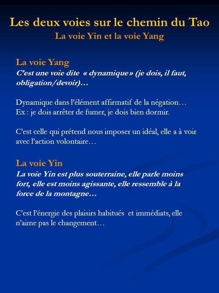 La voie Yang Cest une voie dite « dynamique » (je dois, il faut, obligation/devoir)… Dynamique dans lélément affirmatif de la négation… Ex : je dois a