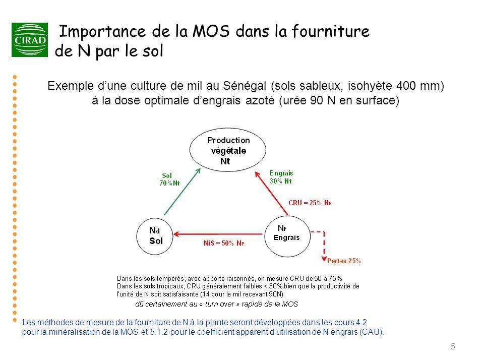 5 Importance de la MOS dans la fourniture de N par le sol Exemple dune culture de mil au Sénégal (sols sableux, isohyète 400 mm) à la dose optimale de