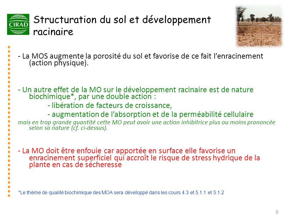 Structuration du sol et développement racinaire - La MOS augmente la porosité du sol et favorise de ce fait lenracinement (action physique). - Un autr