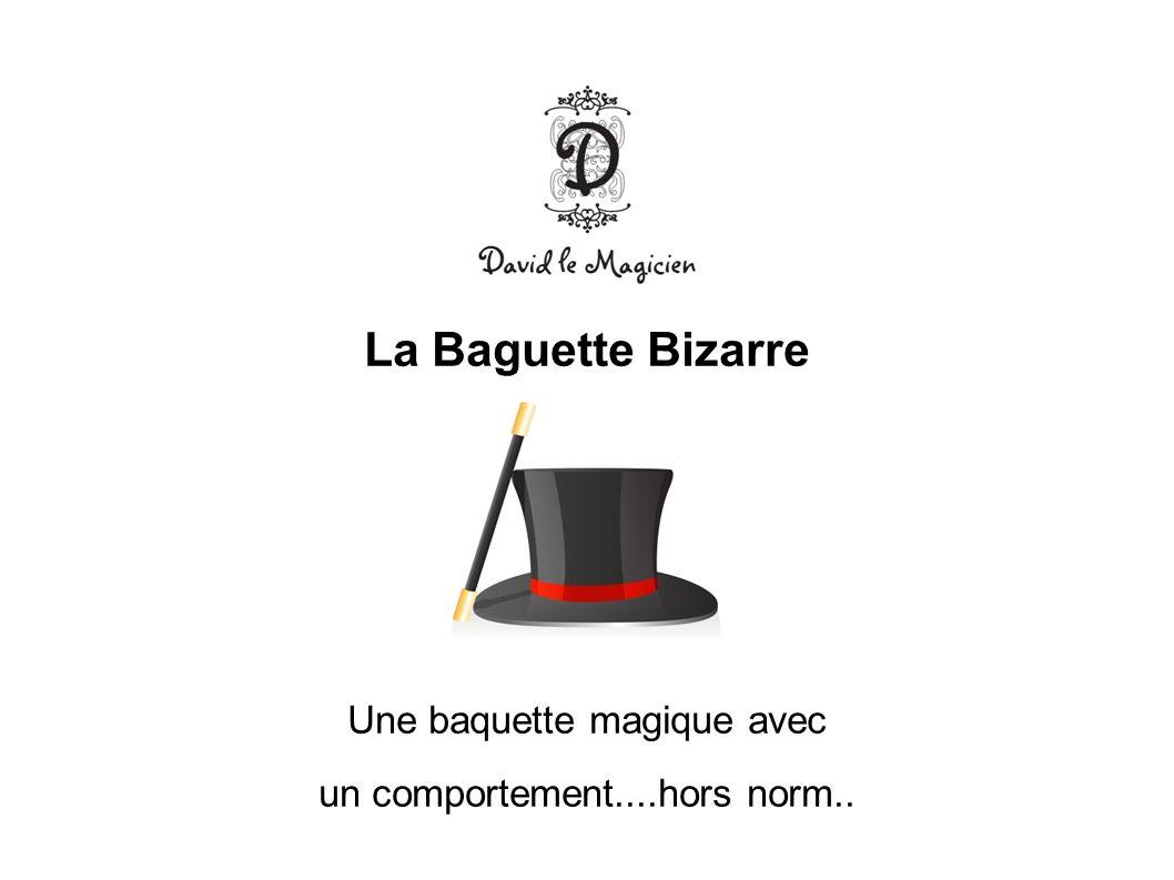La Baguette Bizarre Une baquette magique avec un comportement....hors norm..