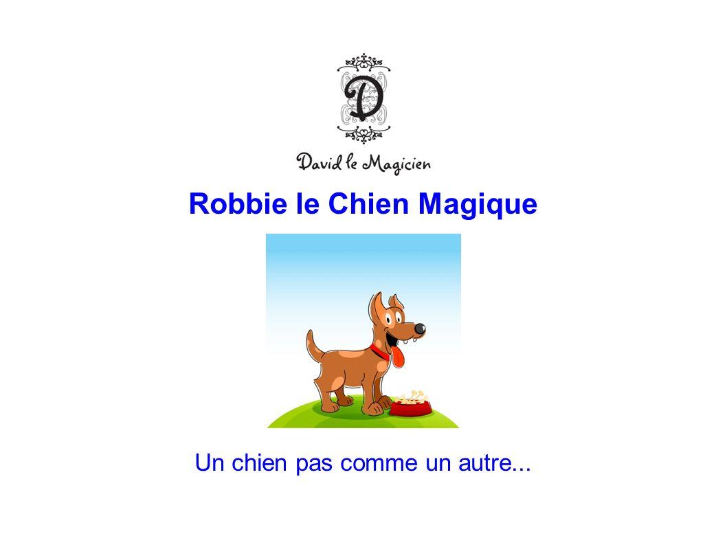 Robbie le Chien Magique Un chien pas comme un autre...