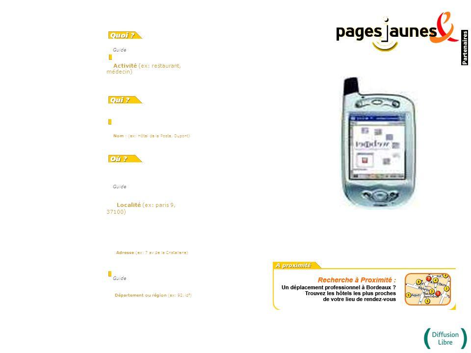 Guide Activité (ex: restaurant, médecin) Nom : (ex: Hôtel de la Poste, Dupont) Guide Localité (ex: paris 9, 37100) Adresse (ex: 7 av de la Cristalleri