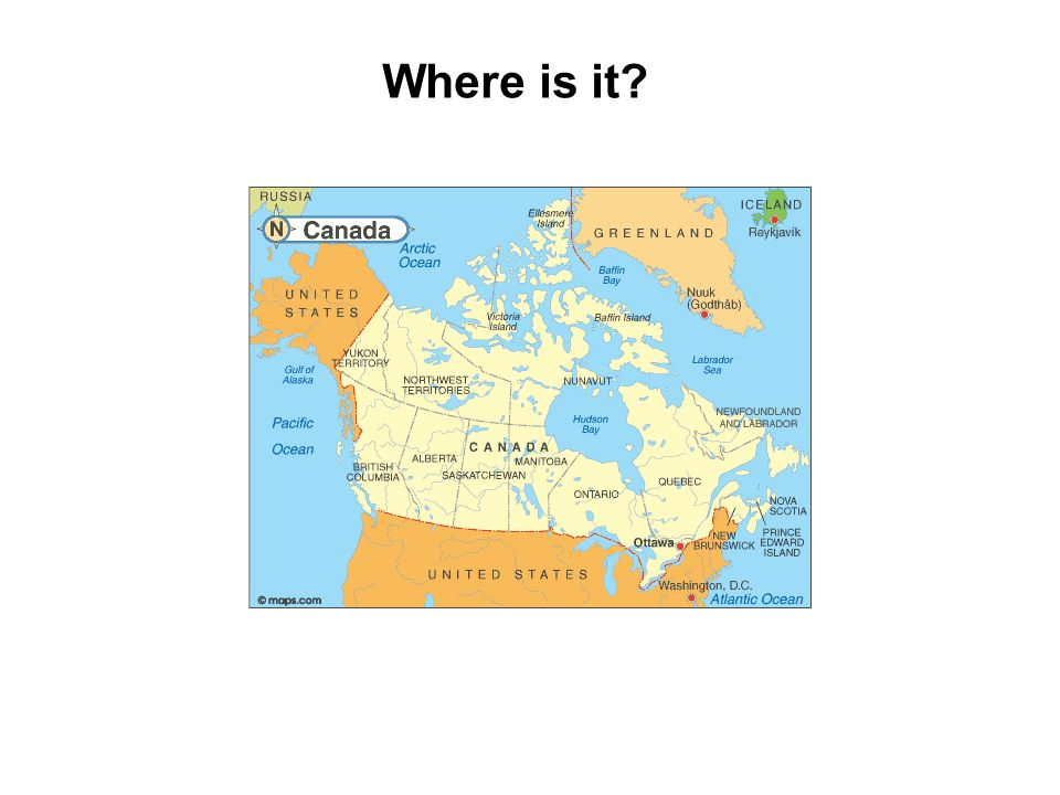 Where is it