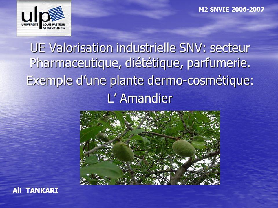 UE Valorisation industrielle SNV: secteur Pharmaceutique, diététique, parfumerie. Exemple dune plante dermo-cosmétique: L Amandier M2 SNVIE 2006-2007
