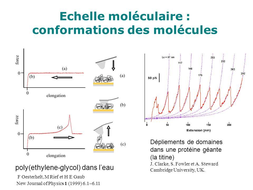 Echelle moléculaire : conformations des molécules Dépliements de domaines dans une protéine géante (la titine) J. Clarke, S. Fowler et A. Steward Camb