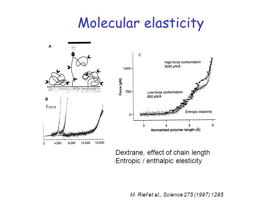 Molecular elasticity Force C M. Rief et al., Science 275 (1997) 1295 Dextrane, effect of chain length Entropic / enthalpic elesticity