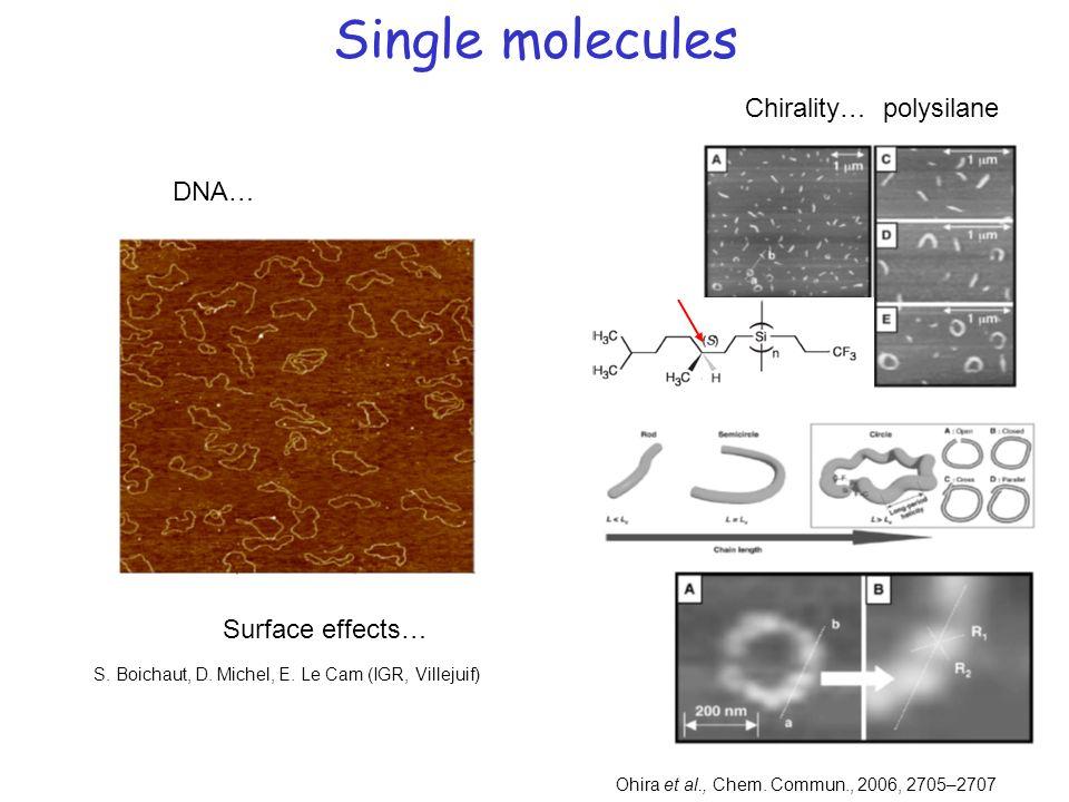 Single molecules Ohira et al., Chem. Commun., 2006, 2705–2707 Chirality… polysilane DNA… Surface effects… S. Boichaut, D. Michel, E. Le Cam (IGR, Vill