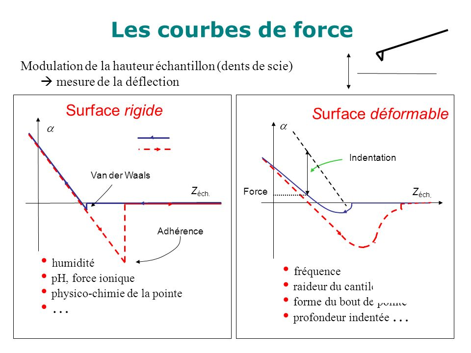 Z éch. Van der Waals Adhérence Modulation de la hauteur échantillon (dents de scie) mesure de la déflection Surface rigide humidité pH, force ionique