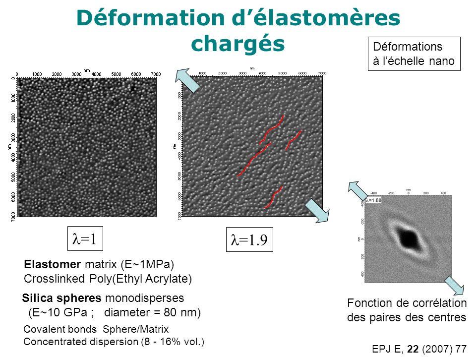 Déformation délastomères chargés =1 =1.9 Silica spheres monodisperses (E~10 GPa ; diameter = 80 nm) Elastomer matrix (E~1MPa) Crosslinked Poly(Ethyl A