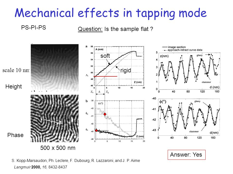 Mechanical effects in tapping mode scale 10 nm soft rigid Height Phase 500 x 500 nm S. Kopp-Marsaudon, Ph. Leclere, F. Dubourg, R. Lazzaroni, and J. P