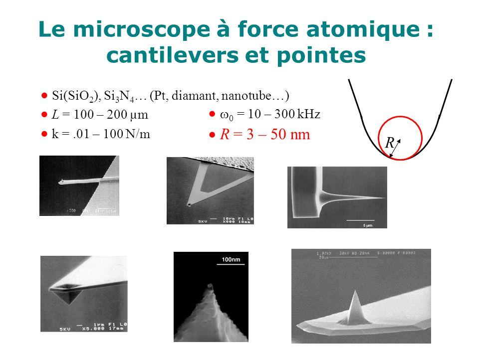 Si(SiO 2 ), Si 3 N 4 … (Pt, diamant, nanotube…) L = 100 – 200 µm k =.01 – 100 N/m R 0 = 10 – 300 kHz R = 3 – 50 nm Le microscope à force atomique : ca