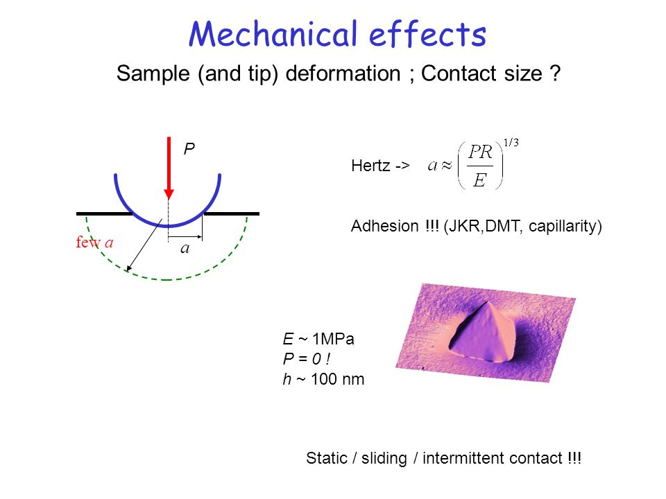 Mechanical effects a few a P Hertz -> Adhesion !!! (JKR,DMT, capillarity) Sample (and tip) deformation ; Contact size ? Static / sliding / intermitten