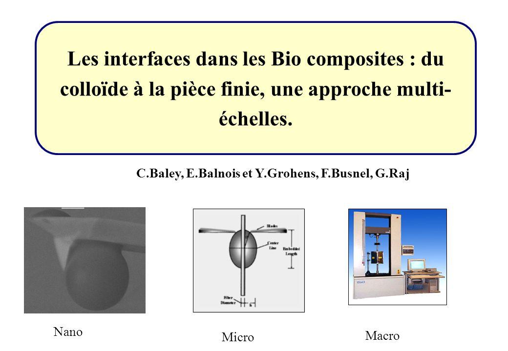 Les interfaces dans les Bio composites : du colloïde à la pièce finie, une approche multi- échelles. Nano Micro Macro C.Baley, E.Balnois et Y.Grohens,