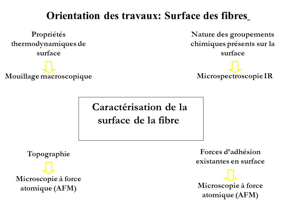 Caractérisation de la surface de la fibre Orientation des travaux: Surface des fibres Propriétés thermodynamiques de surface Nature des groupements ch