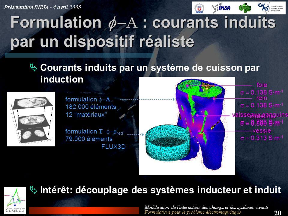 Présentation INRIA - 4 avril 2005 20 CEGELY Modélisation de l'interaction des champs et des systèmes vivants Formulation : courants induits par un dis