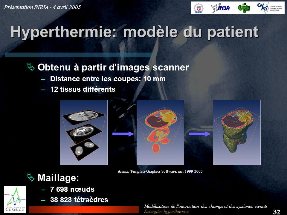 Présentation INRIA - 4 avril 2005 32 CEGELY Modélisation de l'interaction des champs et des systèmes vivants Hyperthermie: modèle du patient Obtenu à