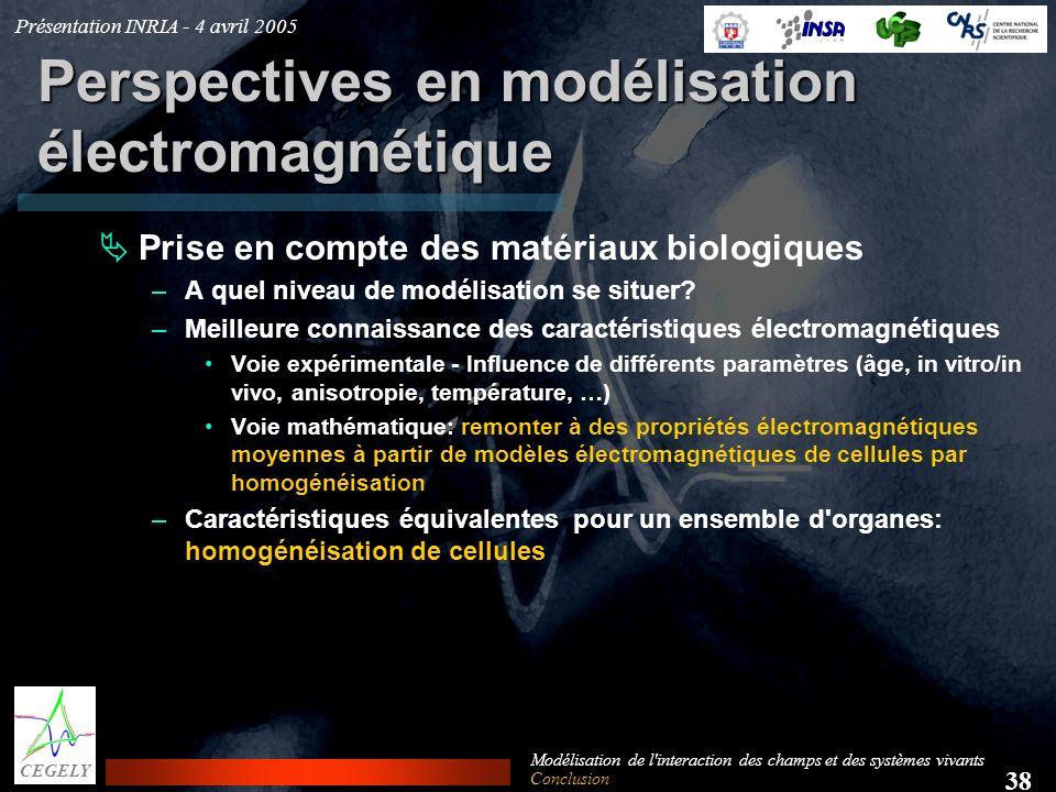 Présentation INRIA - 4 avril 2005 38 CEGELY Modélisation de l'interaction des champs et des systèmes vivants Perspectives en modélisation électromagné