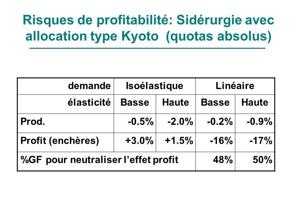 Risques de profitabilité: Sidérurgie avec allocation type Kyoto (quotas absolus) demandeIsoélastiqueLinéaire élasticitéBasseHauteBasseHaute Prod.-0.5%
