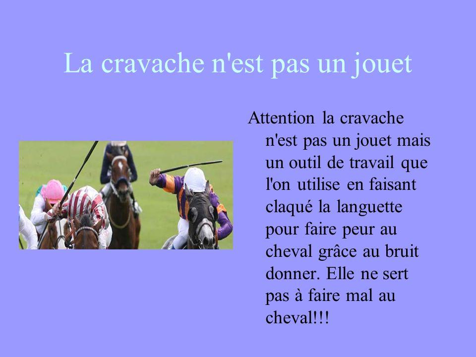 La cravache n est pas un jouet Attention la cravache n est pas un jouet mais un outil de travail que l on utilise en faisant claqué la languette pour faire peur au cheval grâce au bruit donner.