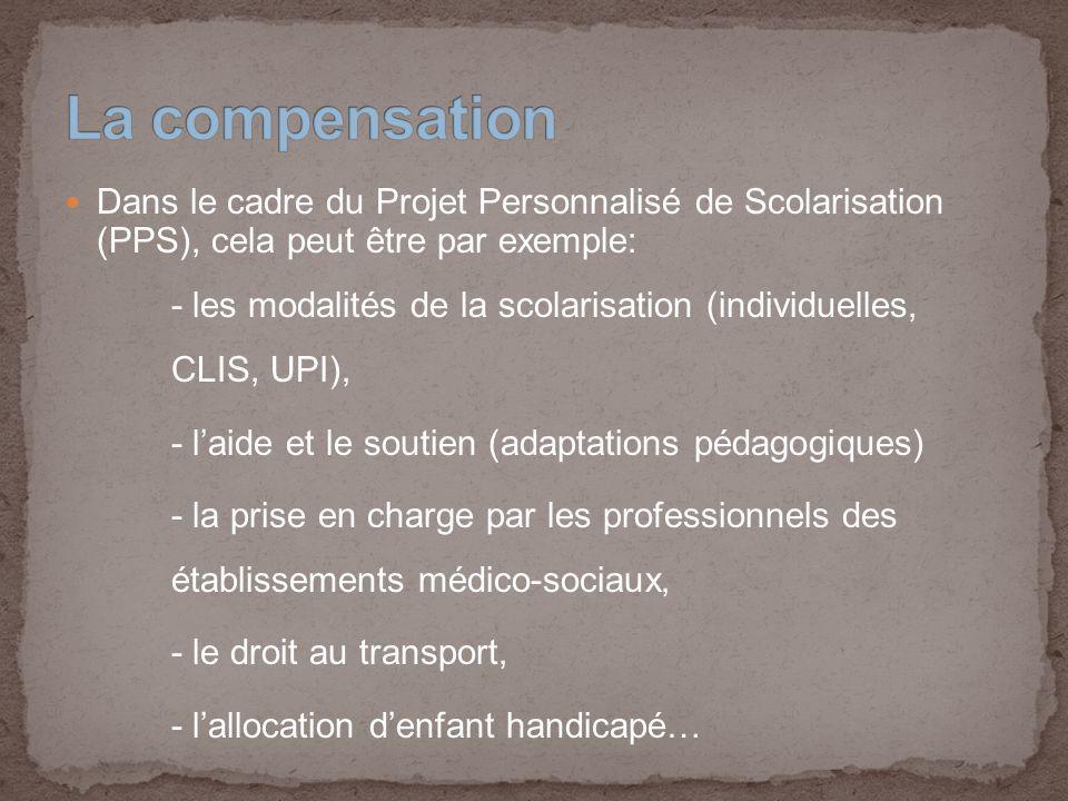 Dans le cadre du Projet Personnalisé de Scolarisation (PPS), cela peut être par exemple: - les modalités de la scolarisation (individuelles, CLIS, UPI