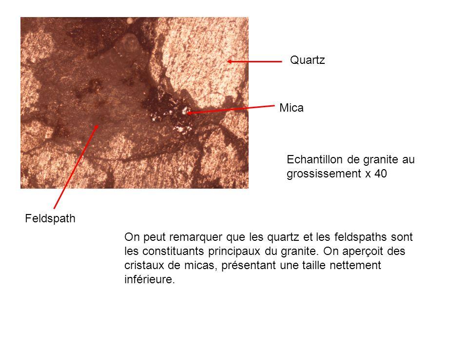 Quartz Mica Feldspath Echantillon de granite au grossissement x 40 On peut remarquer que les quartz et les feldspaths sont les constituants principaux