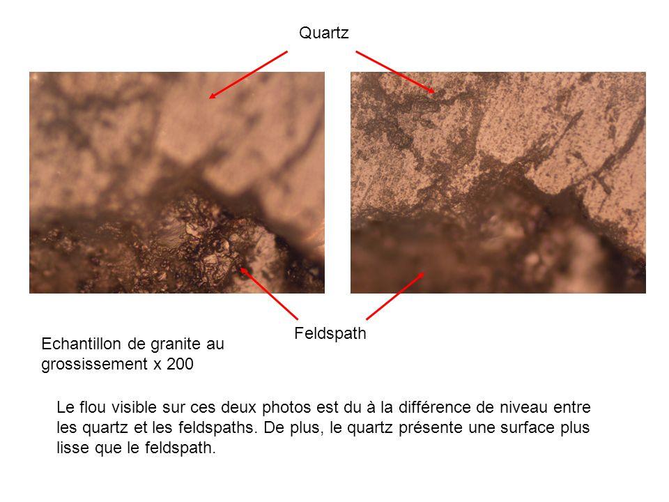 Echantillon de granite au grossissement x 500 Cristaux de mica Feldspath Le cristal de mica est très facilement identifiable grâce à son aspect brillant.