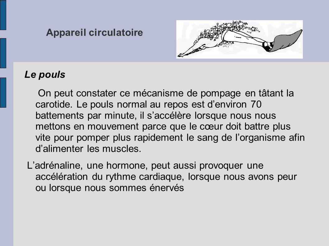 Le pouls On peut constater ce mécanisme de pompage en tâtant la carotide. Le pouls normal au repos est denviron 70 battements par minute, il saccélère