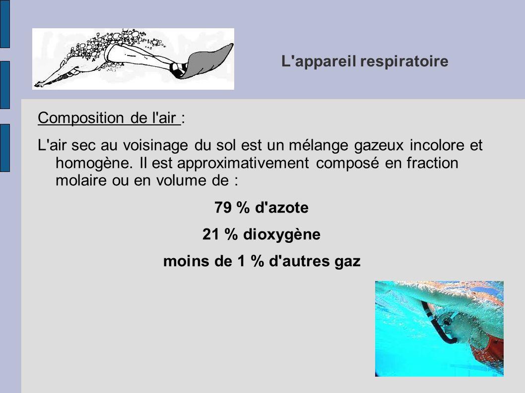 L'appareil respiratoire Composition de l'air : L'air sec au voisinage du sol est un mélange gazeux incolore et homogène. Il est approximativement comp