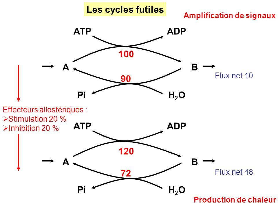 Les cycles futiles Flux net 10 Flux net 48 AB ATPADP H2OH2OPi 100 90 AB ATPADP H2OH2OPi 120 72 Production de chaleur Effecteurs allostériques : Stimul