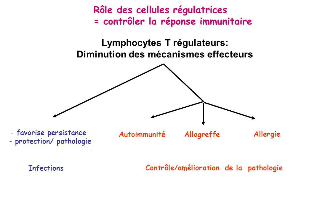 Lymphocytes T régulateurs: Diminution des mécanismes effecteurs - favorise persistance - protection/ pathologie AutoimmunitéAllogreffe Allergie Contrô