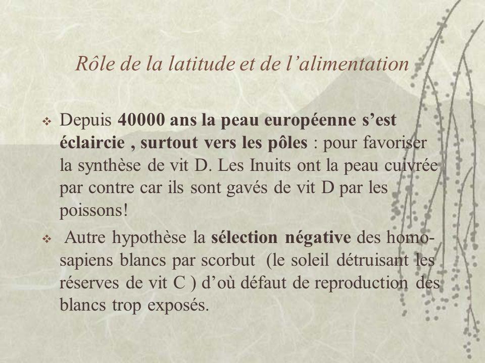 Rôle de la latitude et de lalimentation Depuis 40000 ans la peau européenne sest éclaircie, surtout vers les pôles : pour favoriser la synthèse de vit