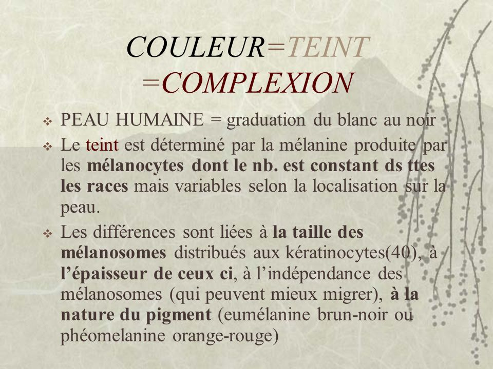 COULEUR=TEINT =COMPLEXION PEAU HUMAINE = graduation du blanc au noir Le teint est déterminé par la mélanine produite par les mélanocytes dont le nb. e