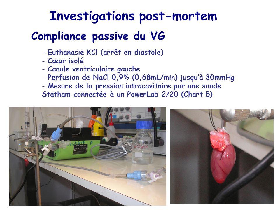 Compliance passive du VG - Euthanasie KCl (arrêt en diastole) - Cœur isolé - Canule ventriculaire gauche - Perfusion de NaCl 0,9% (0,68mL/min) jusquà