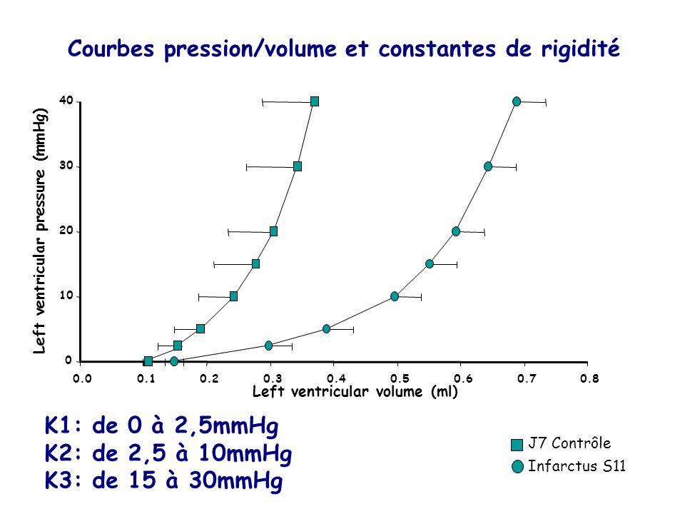 0 10 20 30 40 0.00.10.20.30.40.50.60.70.8 Left ventricular volume (ml) Left ventricular pressure (mmHg) J7 Contrôle Infarctus S11 Courbes pression/vol
