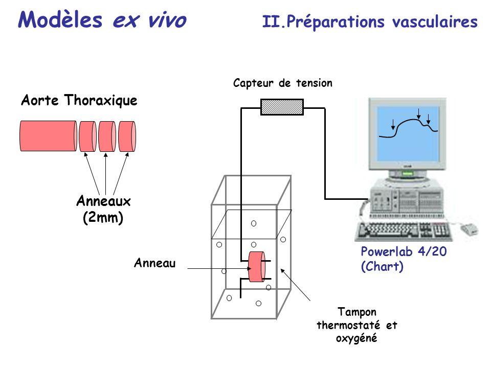 Anneau Tampon thermostaté et oxygéné Capteur de tension Aorte Thoraxique Anneaux (2mm) Modèles ex vivo II.Préparations vasculaires Powerlab 4/20 (Char
