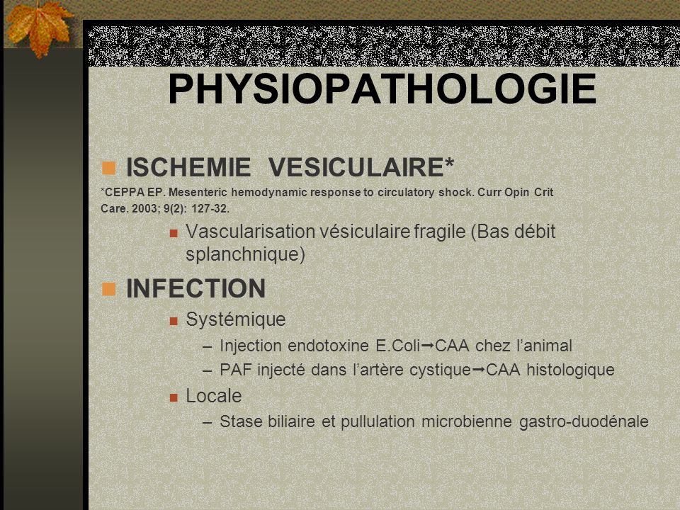 PHYSIOPATHOLOGIE ISCHEMIE VESICULAIRE* *CEPPA EP. Mesenteric hemodynamic response to circulatory shock. Curr Opin Crit Care. 2003; 9(2): 127-32. Vascu