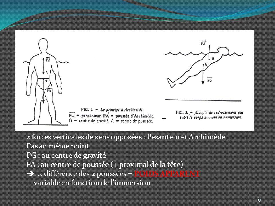 2 forces verticales de sens opposées : Pesanteur et Archimède Pas au même point PG : au centre de gravité PA : au centre de poussée (+ proximal de la