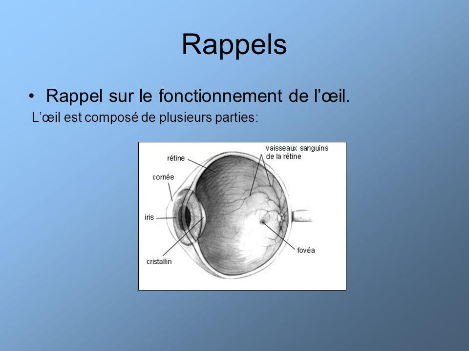 Rappels Rappel sur le fonctionnement de lœil.La rétine est tapissée de cônes et de bâtonnets.
