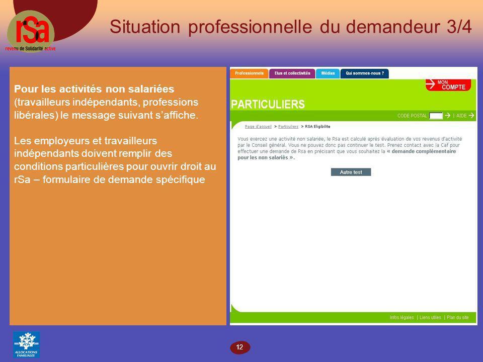 12 Situation professionnelle du demandeur 3/4 Pour les activités non salariées (travailleurs indépendants, professions libérales) le message suivant saffiche.