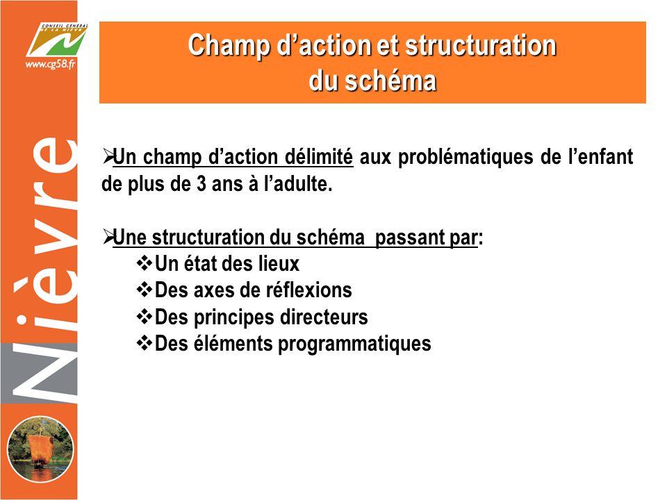 Champ daction et structuration du schéma Un champ daction délimité aux problématiques de lenfant de plus de 3 ans à ladulte.