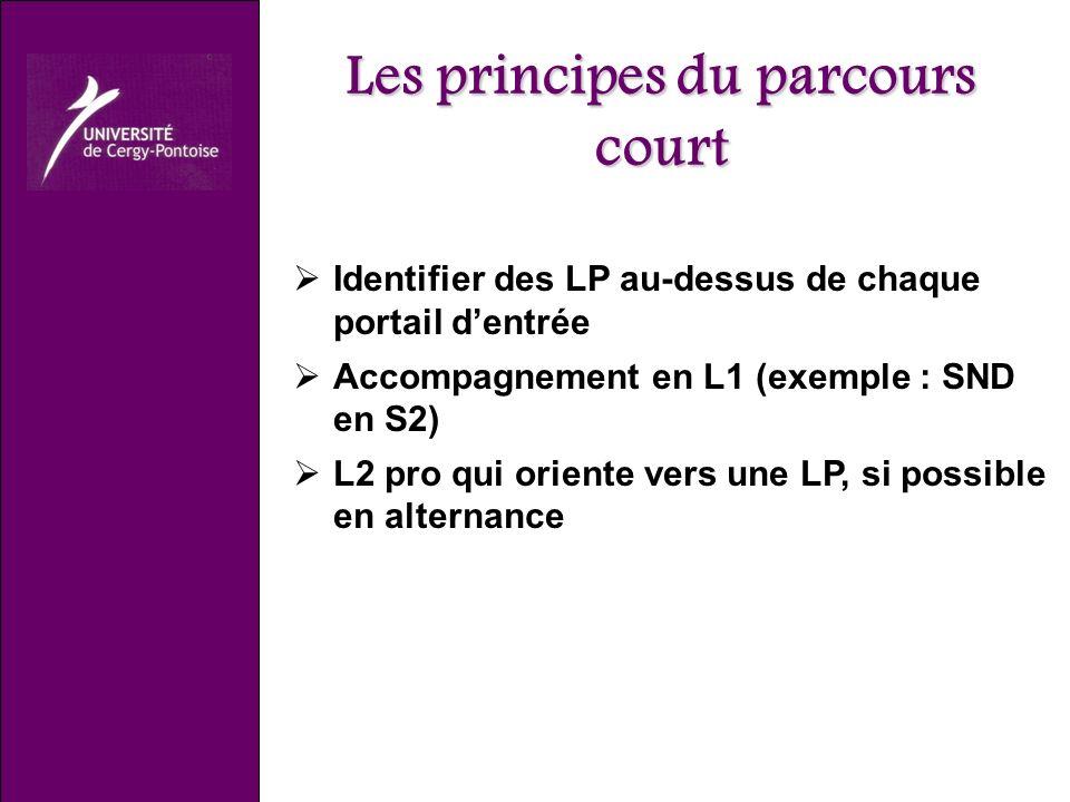 Les principes du parcours court Identifier des LP au-dessus de chaque portail dentrée Accompagnement en L1 (exemple : SND en S2) L2 pro qui oriente vers une LP, si possible en alternance