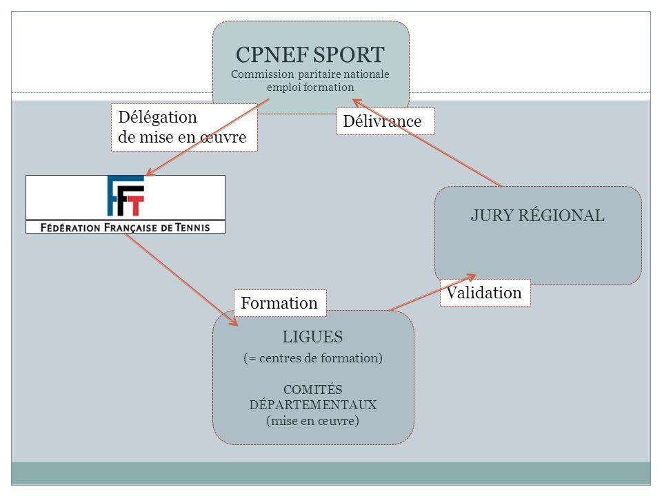 CPNEF SPORT Commission paritaire nationale emploi formation LIGUES (= centres de formation) COMITÉS DÉPARTEMENTAUX (mise en œuvre) JURY RÉGIONAL Délég