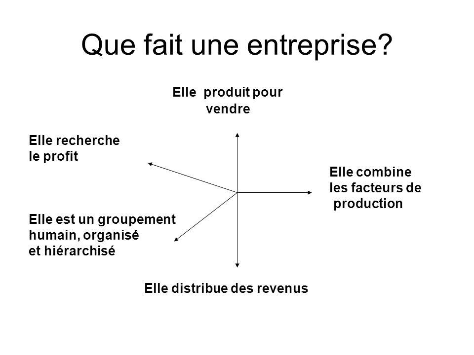 Que fait une entreprise? Elle produit pour vendre Elle recherche le profit Elle combine les facteurs de production Elle est un groupement humain, orga