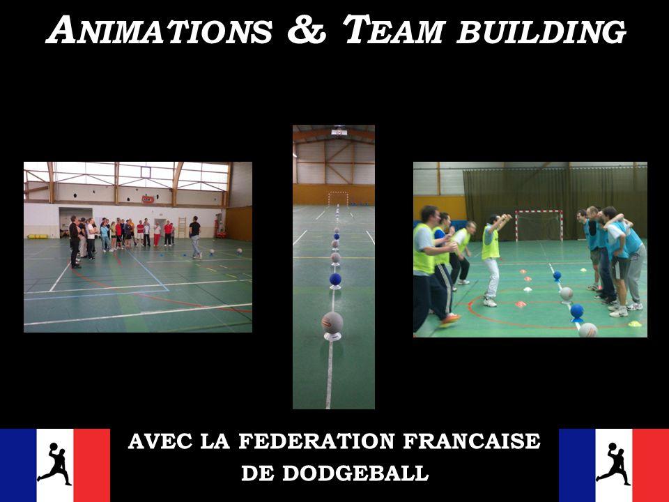 AVEC LA FEDERATION FRANCAISE DE DODGEBALL A NIMATIONS & T EAM BUILDING
